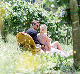 Picknick-im-Weingarten